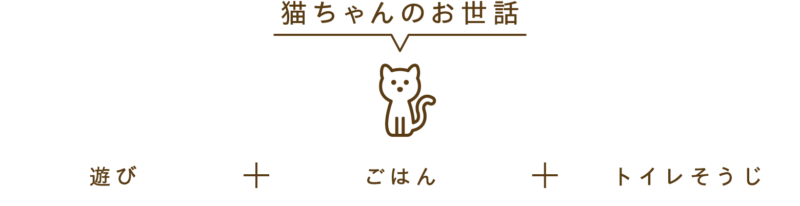 猫ちゃんのお世話